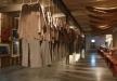 Afbeelding Gevangenismuseum