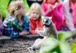 Afbeelding Vogelpark Avifauna