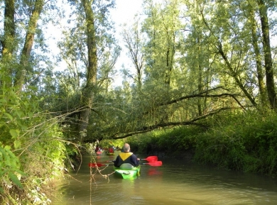 Biesbosch Jungle Challenge