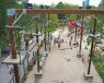 Schoolreis Dinoland Zwolle afbeelding