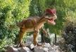 Afbeelding Basisschoolarrangement 'Dinoland'