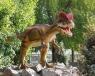 Basisschoolarrangement 'Dinoland' afbeelding