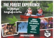 Afbeelding Forest Lodge - Forest Experience